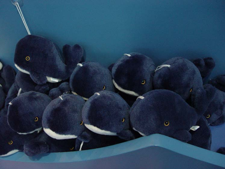 03-03-03 Many dolls of a blue whale for sale jpg